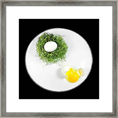 Nesting Framed Print by Diana Angstadt