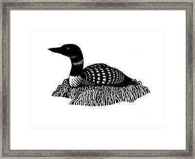 Nesting Loon Framed Print