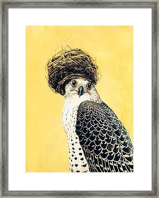 Nesting Series Vii Framed Print