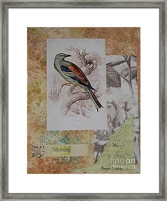 Nesting Framed Print by Tamyra Crossley