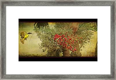 Nesting Tropical Bird Framed Print by Peggy Collins