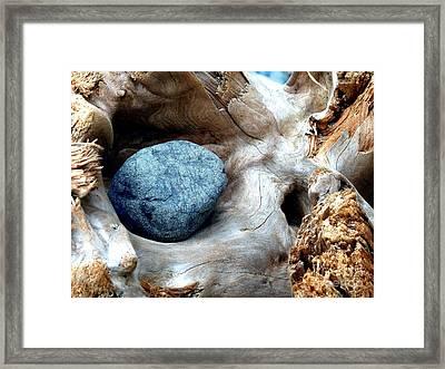 Nestle Framed Print by Lauren Leigh Hunter Fine Art Photography