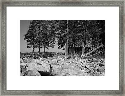 Nestled Framed Print by Becca Brann