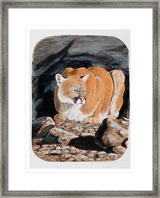 Nevada Cougar Framed Print