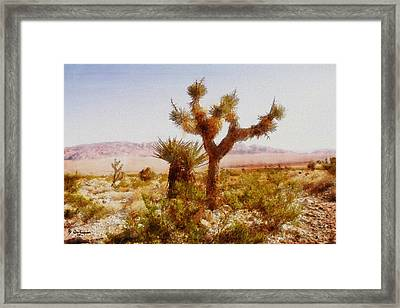Nevada Desert Framed Print