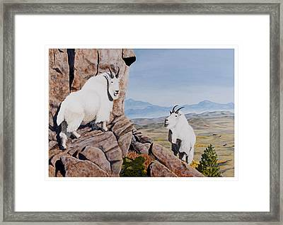 Nevada Mountain Goats Framed Print