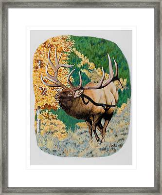 Nevada Nontypical Elk Framed Print