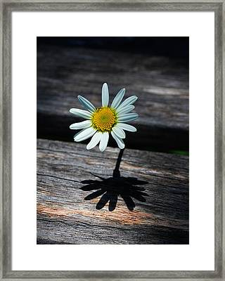 Never Alone Framed Print