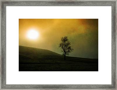Never Alone Framed Print by Randy Wood