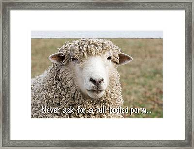 Never Ask For A Full-bodied Perm Framed Print by Jeff Abrahamson
