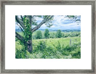 Never Ending Fields Framed Print by Karol Livote