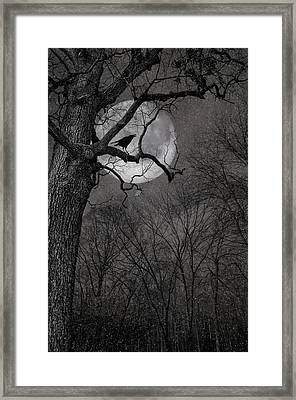 Framed Print featuring the photograph Nevermore by Robin-Lee Vieira