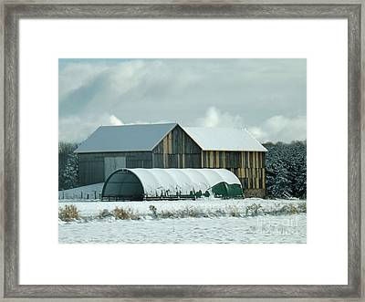 Framed Print featuring the photograph New And Old Barn Planks by Brenda Brown
