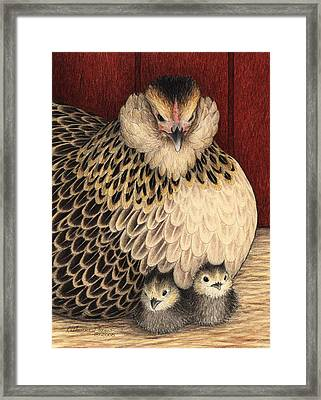 New Arrivals Framed Print