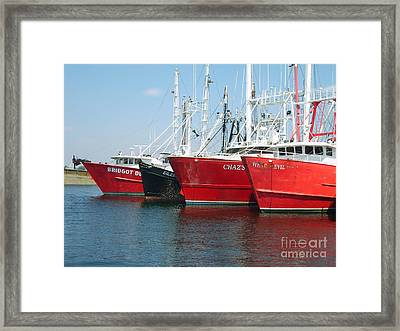 New Bedford's Commercial Fishing Fleet Framed Print