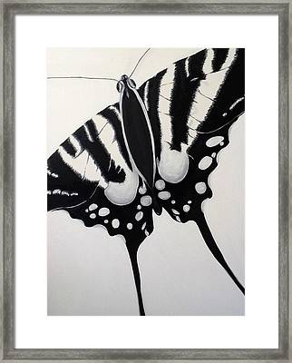 New Beginning Framed Print by Matthew Abraham