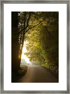 New Beginnings Framed Print by Andrew Soundarajan