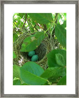 New Beginnings No 16 Framed Print by TJ Hollywood