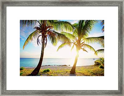 New Bimini Framed Print