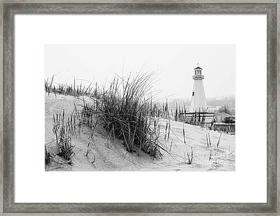 New Buffalo Michigan Lighthouse And Beach Grass Framed Print by Paul Velgos