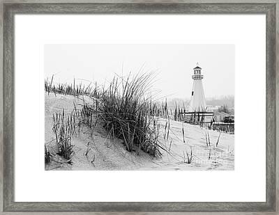 New Buffalo Michigan Lighthouse And Beach Grass Framed Print