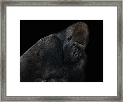 New Chief In Town Framed Print by Joachim G Pinkawa