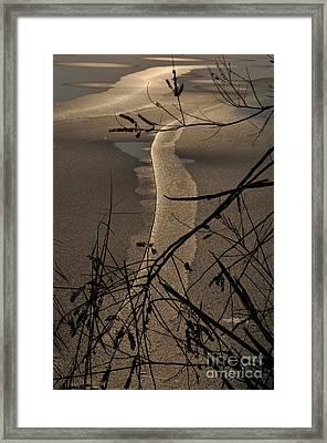 New Directions Framed Print by Simona Ghidini