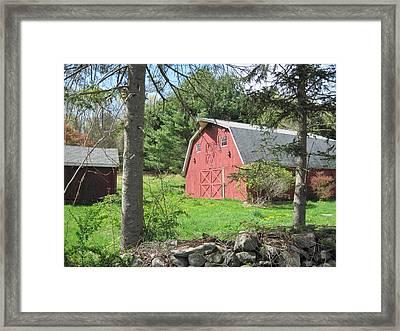 New England Barn Framed Print by Marjorie Tietjen
