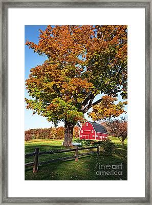 New England Farm Fall Foliage Framed Print by Edward Fielding