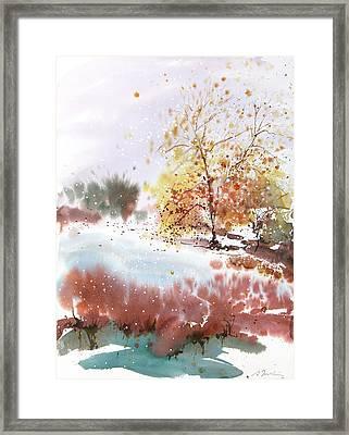 New England Landscape No.219 Framed Print