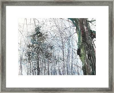 New England Landscape No.224 Framed Print