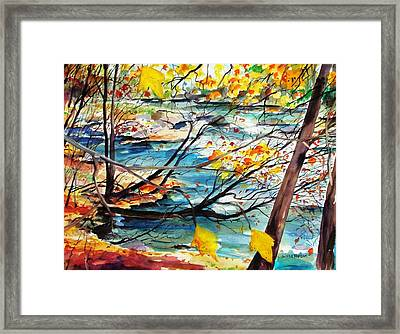 New England Leaves Along The River Framed Print