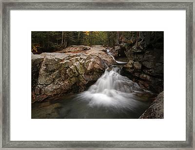 New England Nature  Framed Print