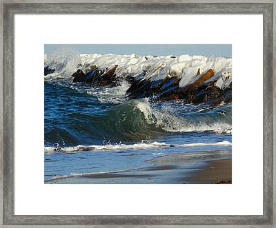 New England Winter Seashore Framed Print by Dianne Cowen