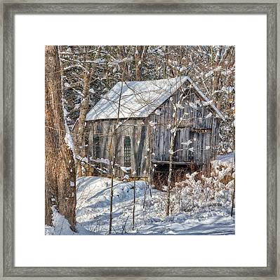 New England Winter Woods Square Framed Print by Bill Wakeley