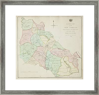 New Forest Region In Southampton Framed Print