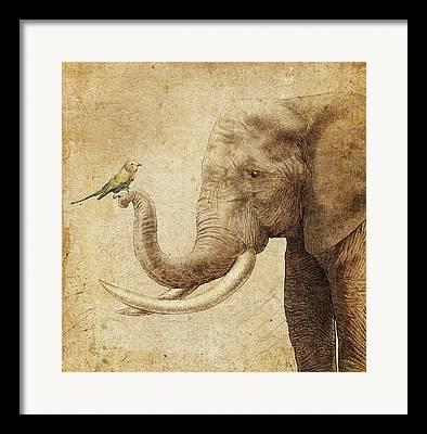 Sepia Drawings Framed Prints