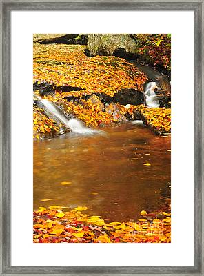 New Hampshire Stream Framed Print