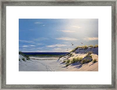 New Jersey Dune Walk Framed Print by Ken Ahlering
