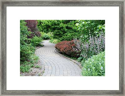 Framed Print featuring the photograph Frelinghuysen Arboretum Path by Richard Bryce and Family