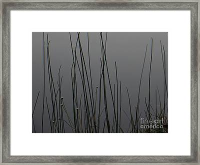 New Joys Framed Print by Joy Hardee