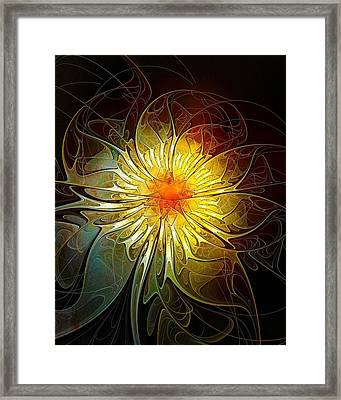 New Life Framed Print by Amanda Moore