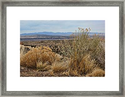 New Mexico Framed Print by Nikolyn McDonald