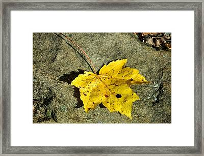 New Moon Framed Print by JAMART Photography