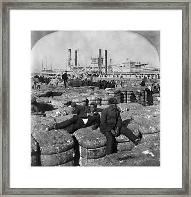 New Orleans Cotton, 1902 Framed Print by Granger