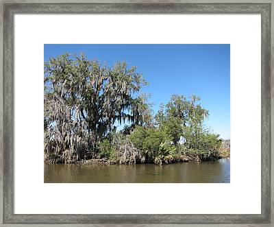 New Orleans - Swamp Boat Ride - 1212132 Framed Print by DC Photographer