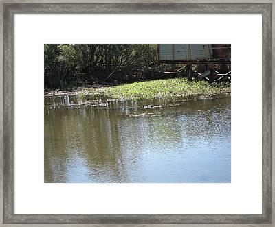 New Orleans - Swamp Boat Ride - 121274 Framed Print