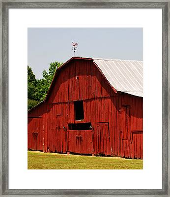 New Paint Framed Print by Linda Segerson