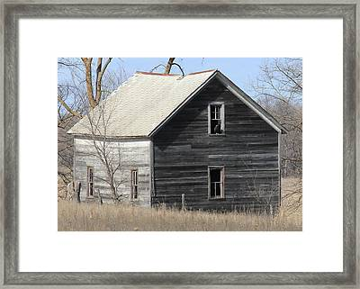 New Resident At Captain Ed's Framed Print by Penny Meyers