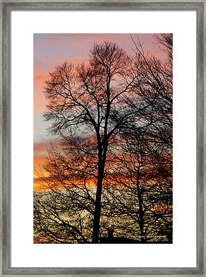 Framed Print featuring the photograph New Years Sunset by Tannis  Baldwin